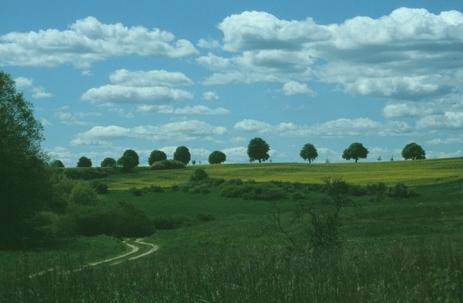 Landschaft bei Cantnitz, Feldberger Seenlandschaft (H. Karl)