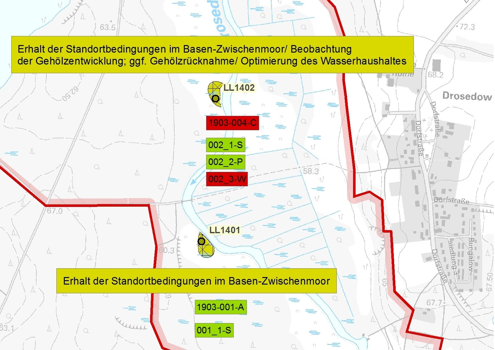Auszug Managementplanung Sumpf-Glanzkraut (Liparis loeselii)