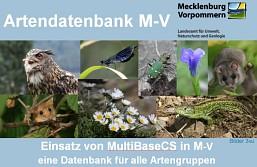 Vortrag Einführung MultiBaseCS (M. Holz)