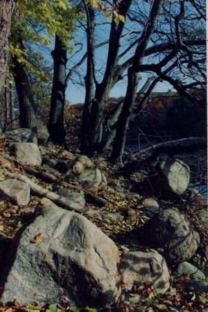Blockpackung im Hullerbusch östlich von Feldberg in der Pommerschen Haupteisrandlage